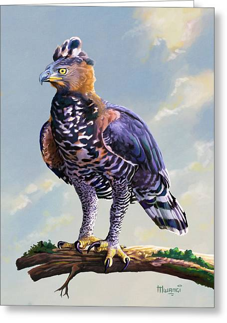 African Crowned Eagle  Greeting Card