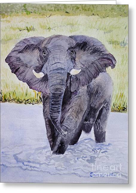 African Elephant Crossing The Chobe River Greeting Card by Samanvitha Rao