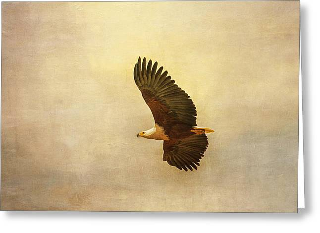 Greeting Card featuring the tapestry - textile African Fish Eagle by Kathy Adams Clark
