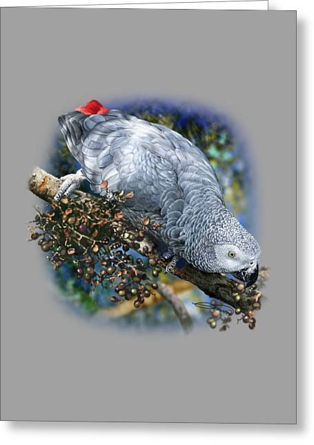 African Grey Parrot A1 Greeting Card by Owen Bell