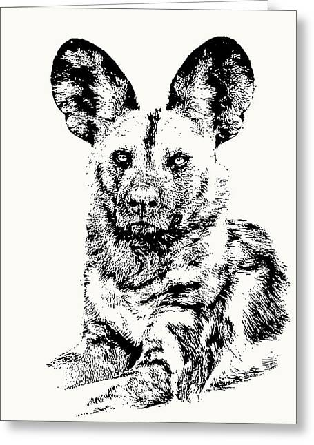 African Painted Dog Making Eye Contact Greeting Card