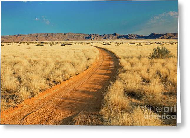 African Sand Road Greeting Card