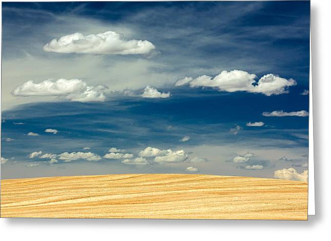 After Harvest Greeting Card by Todd Klassy