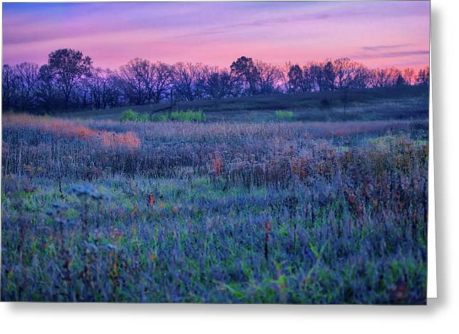 After Sunset - Blue Hour At Retzer Nature Center Greeting Card by Jennifer Rondinelli Reilly - Fine Art Photography