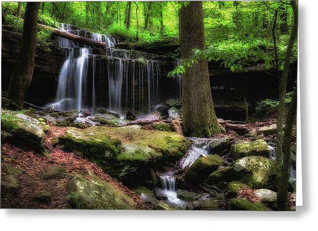 After The Rain Greeting Card by James Barber