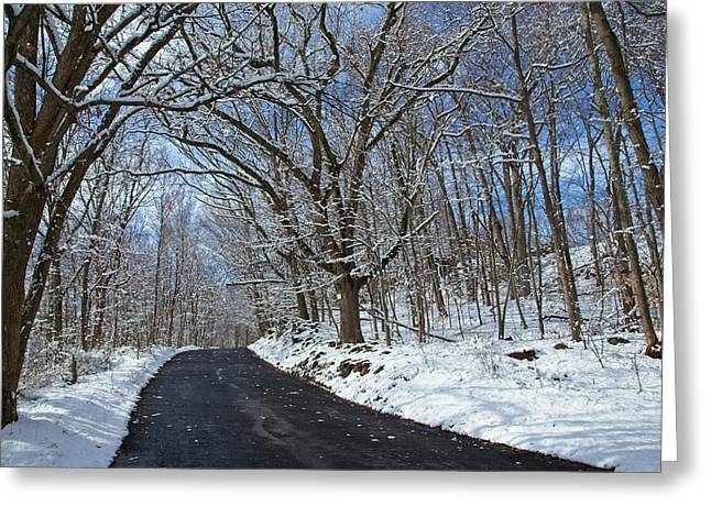 After The Snowfall Greeting Card by Karol Livote