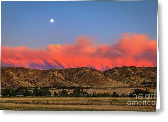 Afterglow Over The Foothills Greeting Card by Robert Bales