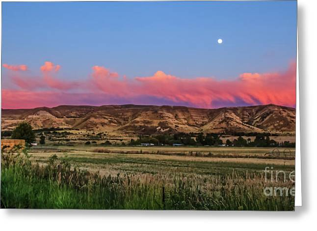 Afterglow Greeting Card by Robert Bales