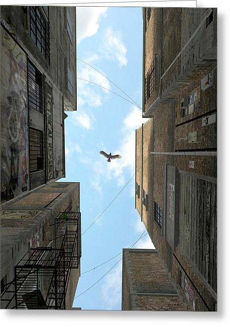 Afternoon Alley Greeting Card