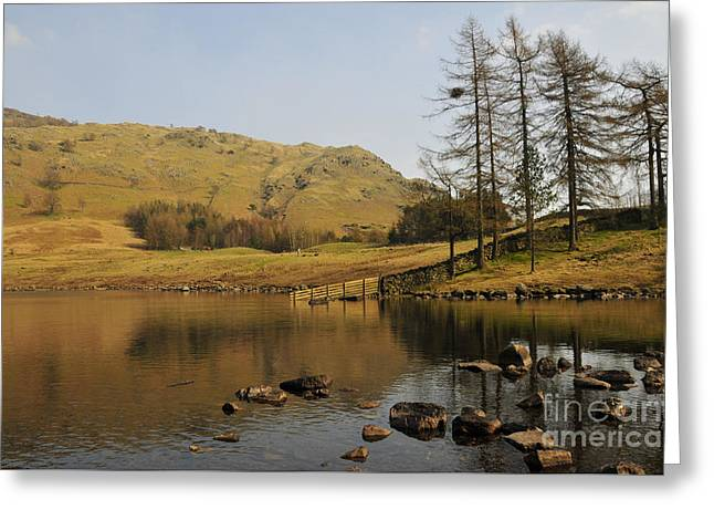 Afternoon At Blea Tarn Greeting Card by Nichola Denny