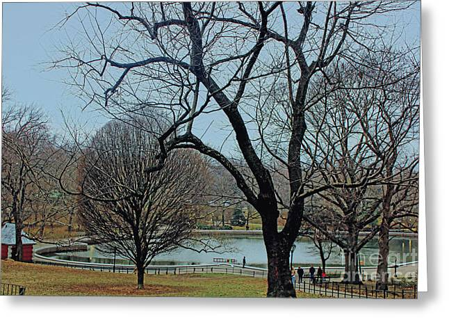 Afternoon In The Park Greeting Card by Sandy Moulder