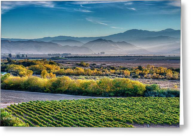 Afternoon Light In The Salinas Valley Greeting Card