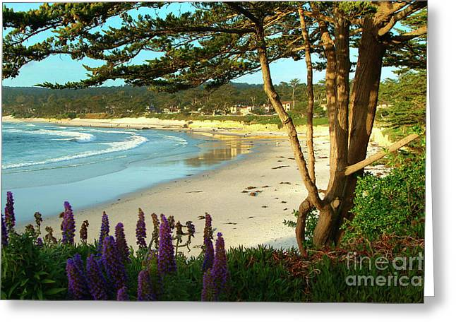 Afternoon On Carmel Beach Greeting Card