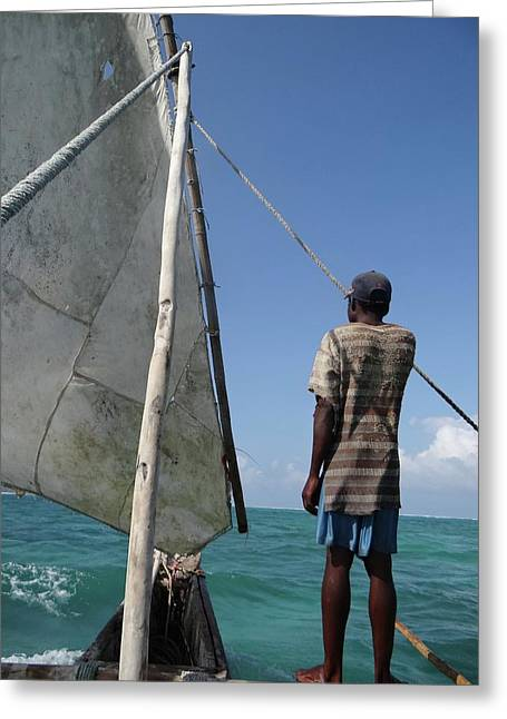 Afternoon Sailing In Africa Greeting Card