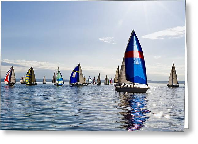Afternoon Sailing Greeting Card by Tom Dowd