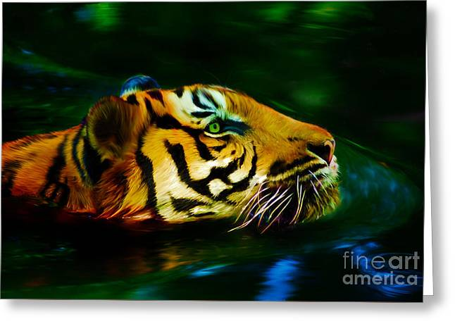 Afternoon Swim - Tiger Greeting Card