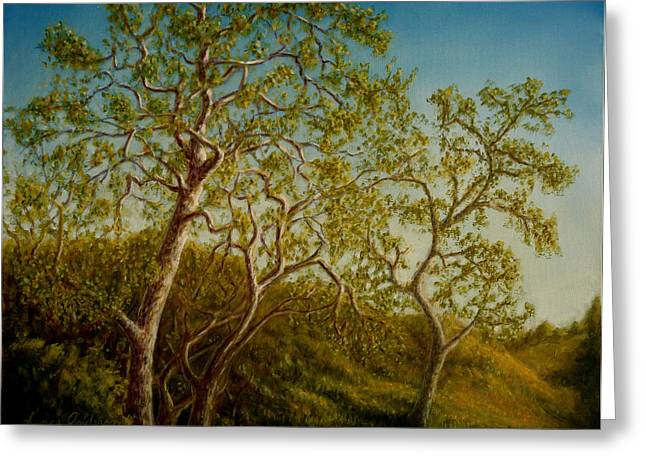 Afternoon Sycamores Greeting Card by Lance Anderson