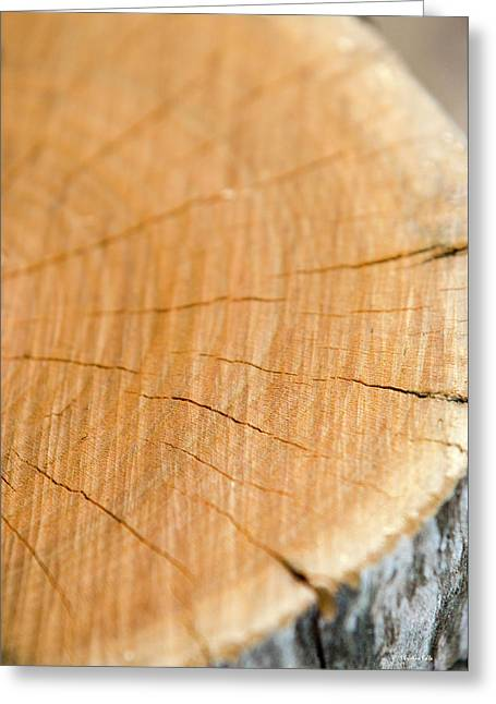 Greeting Card featuring the photograph Against The Grain by Christina Rollo