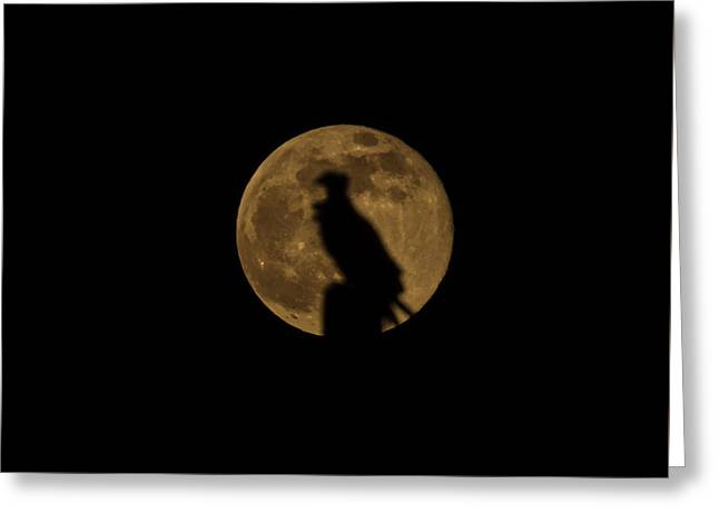Against The Moon Greeting Card by Zina Stromberg