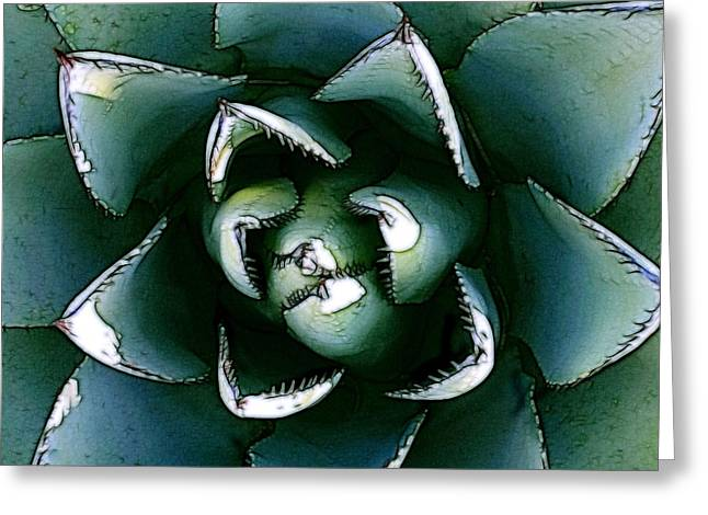 Agave Century Cactus Greeting Card