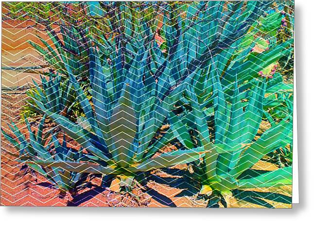 Greeting Card featuring the mixed media Agave by Michelle Dallocchio