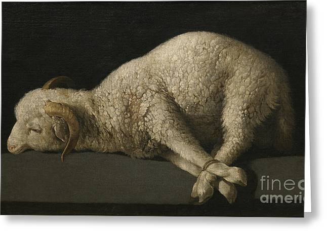 Agnus Dei Greeting Card by Celestial Images