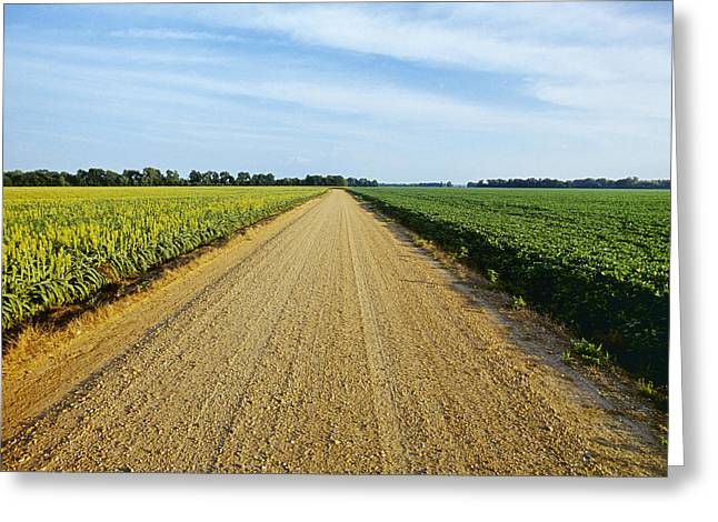 Agriculture - A Gravel Country Road Greeting Card