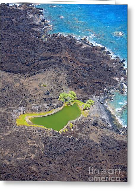 Ahihi Kinau Natural Reserve Greeting Card by Ron Dahlquist - Printscapes