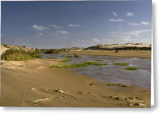 Ahipara Sand Dunes New Zealand Greeting Card by Graham Hughes