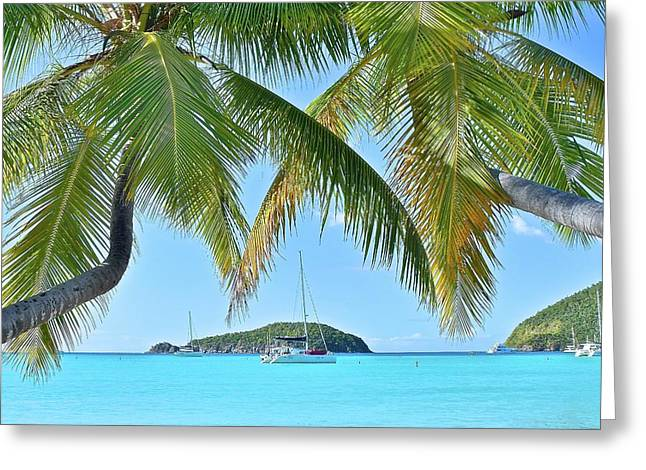 Ahoy Matey Greeting Card by Frozen in Time Fine Art Photography