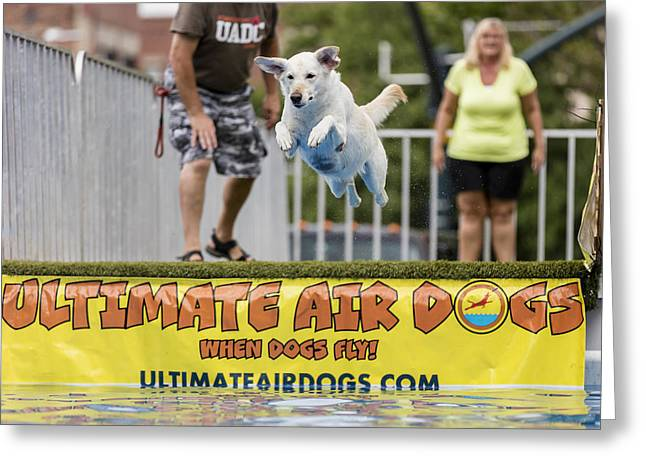 Air Dog 4 Greeting Card