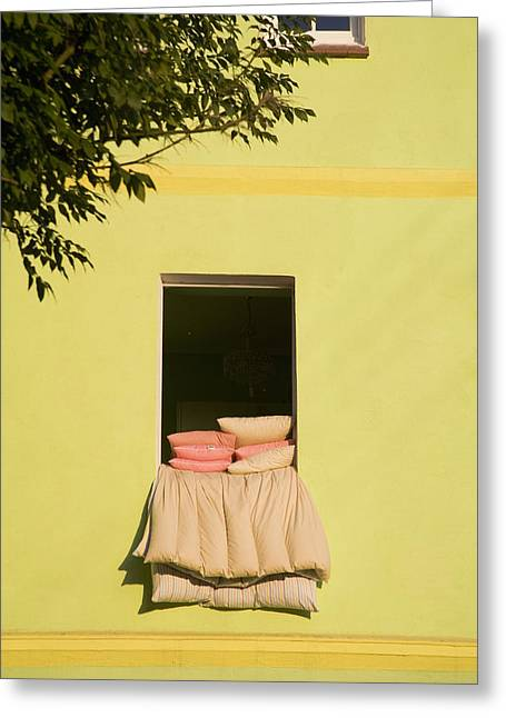 Airing Out Greeting Card by Diane Macdonald