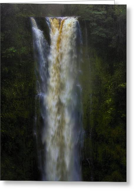 Greeting Card featuring the photograph Akaka Falls by Ellen Heaverlo