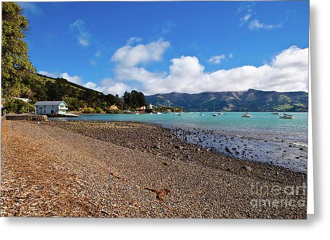 Akaroa Harbour Boatshed Greeting Card by John Buxton