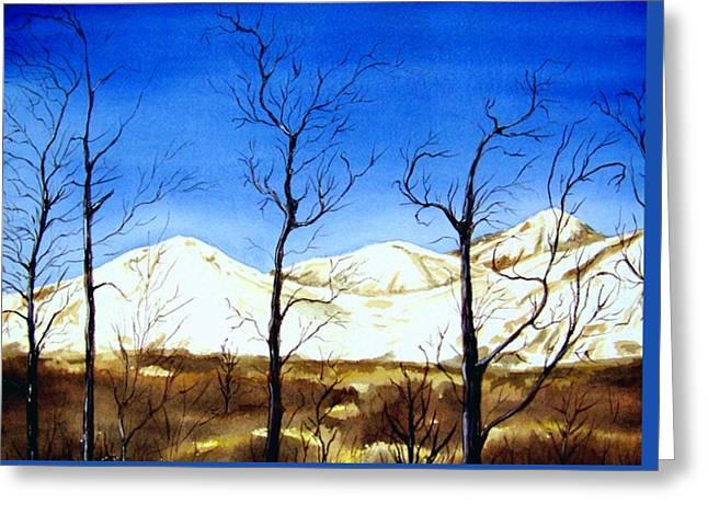 Alaska Blue Sky Day  Greeting Card by Brenda Owen