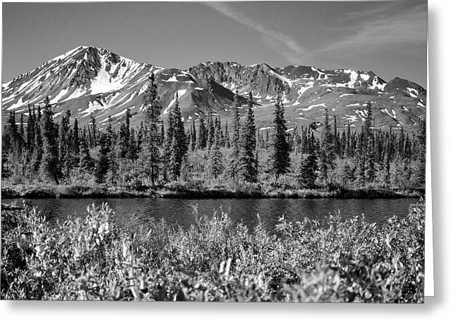 Greeting Card featuring the photograph Alaska Mountains by Zawhaus Photography