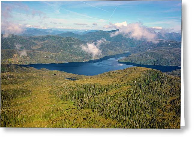 Alaska Overview Greeting Card by Madeline Ellis
