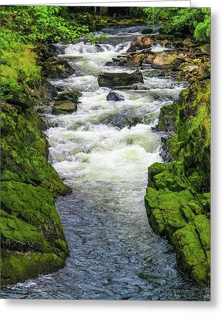 Alaskan Creek Greeting Card
