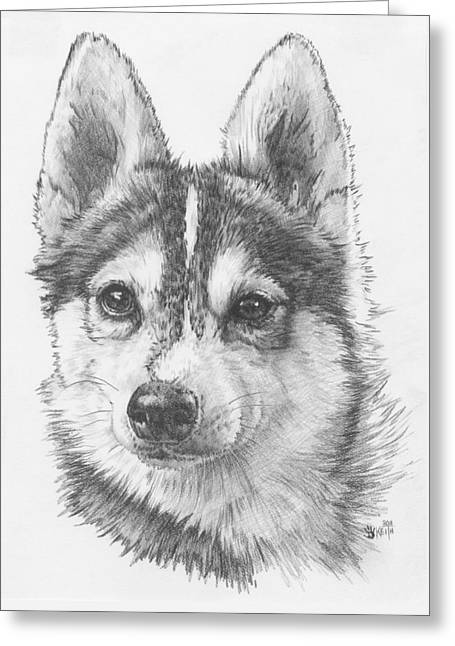 Alaskan Klee Kai Greeting Card by Barbara Keith
