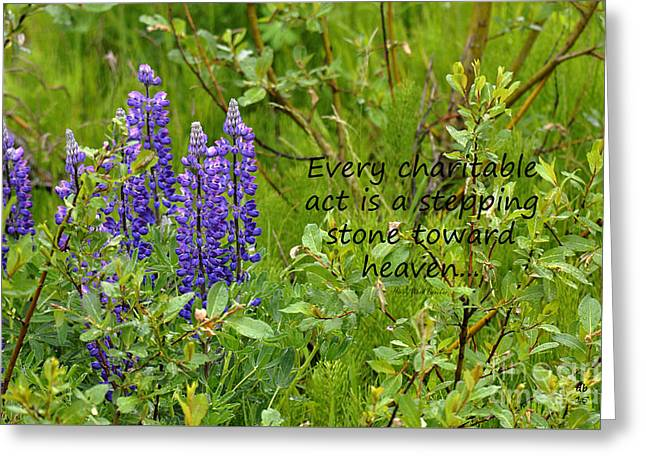 Alaskan Lupine Heaven Greeting Card by Diane E Berry