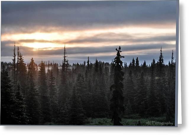 Alaskan Sunset Sunrise Greeting Card