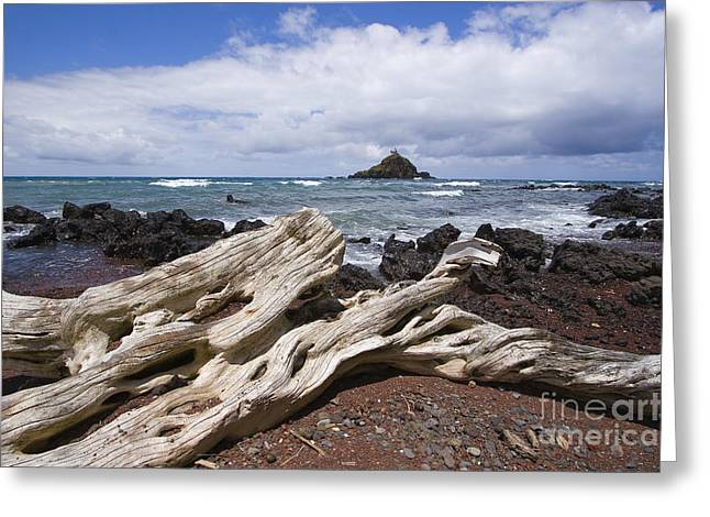 Alau Islet, Driftwood Greeting Card by Ron Dahlquist - Printscapes