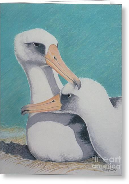 Albatros Love Greeting Card