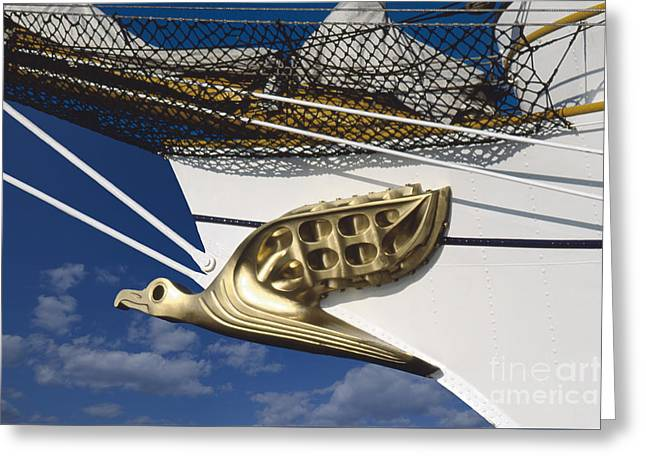 Greeting Card featuring the photograph Albatross Figurehead by Heiko Koehrer-Wagner
