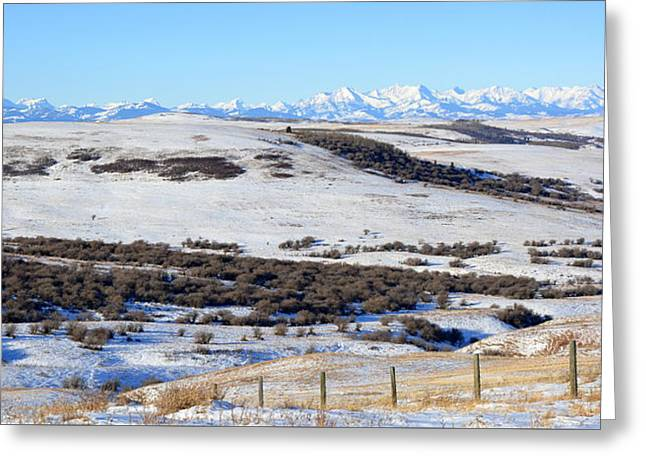 Alberta New Years Day Greeting Card