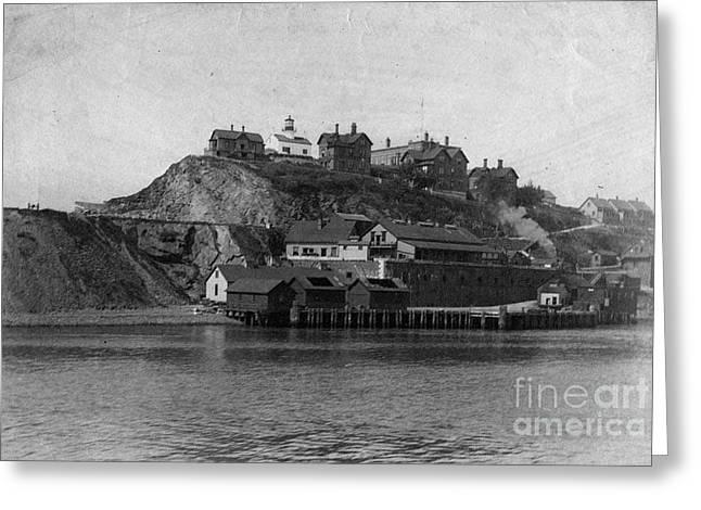 Alcatraz Island Greeting Card by Frederick Holiday