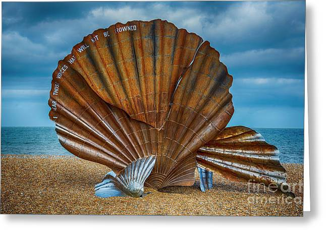 Aldeburgh Scallop Shell Greeting Card by Chris Thaxter