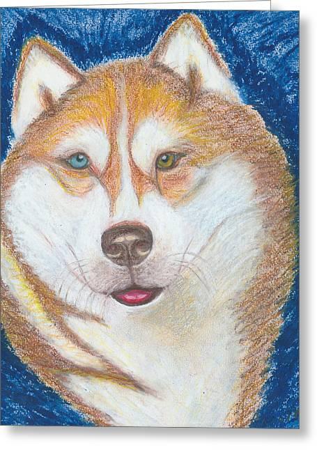 Huskies Drawings Greeting Cards - Alek the Siberian Husky Greeting Card by Ania M Milo