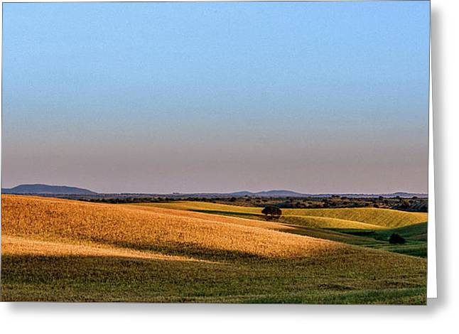 Greeting Card featuring the photograph Alentejo Fields by Marion McCristall
