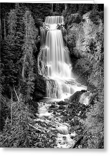 Greeting Card featuring the photograph Alexander Falls - Bw 1 by Stephen Stookey